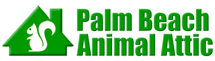 Palm Beach Animal Attic
